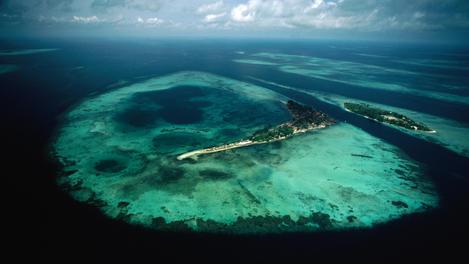 Coral reef Java Sea