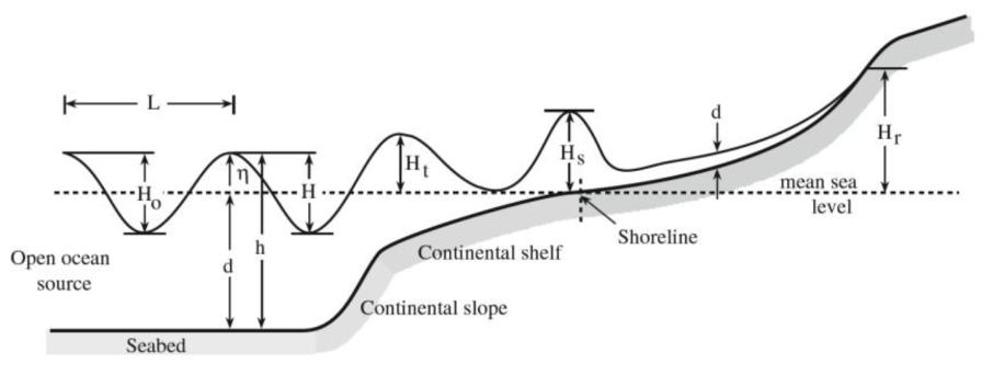Dynamics of Tsunami